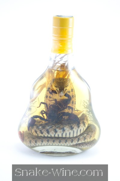 Vietnamese Snake Liquor Combo Free Delivery