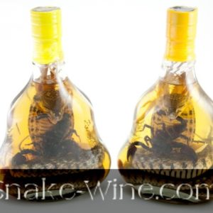 Snake Wine Liquor Shop