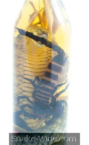 Scorpion Wine Combo Free Delivery