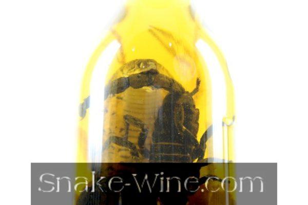 Biggest Snake Liquor Bottle