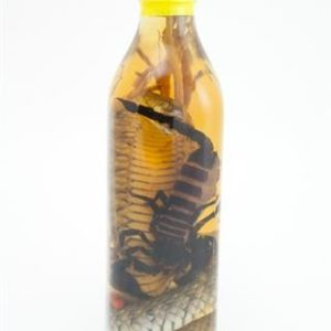 Vietnamese Scorpion Wine Liquor Bottle Free Delivery