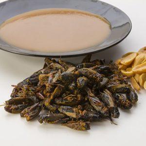 Crickets Satay