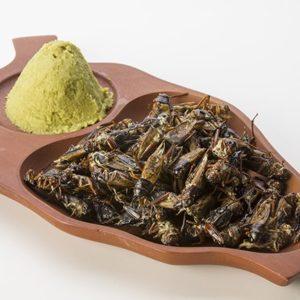 Crickets Wasabi