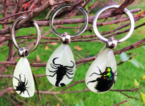 FREE SHIPPING 12 PCS Real Mix Insect In Acrylic Resin Birthday Gift Ornament Decor KeyChain INSECT JEWELRY TAXIDERMY GIFT