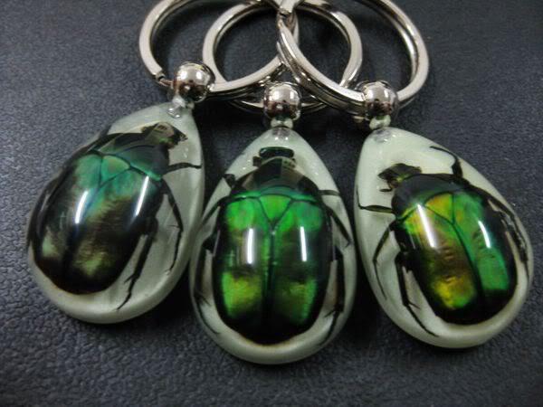 FREE SHIPPING 12 PCS amulet green beetle embedded in teardrop glow in dark new items keychain TAXIDERMY GIFT