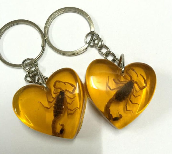 FREE SHIPPING 15 Keychain Real Yellow Scorpion Taxidermy Resin Chic Heart Style Jewelry