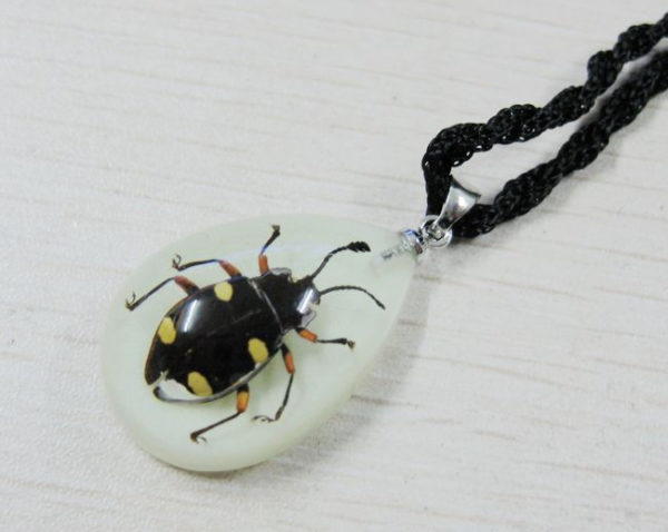 FREE SHIPPING 8PCS NEW REAL BUG GLOW LUCITE FASHION CUTE PENDANT INSECT JEWELRY TAXIDERMY GIFT