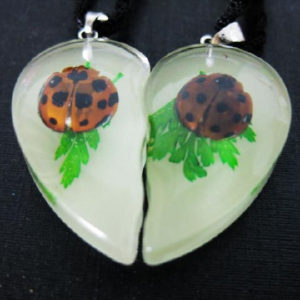 FREE SHIPPING PAIR NEW REAL LADYBUG GLOW HEART CHARMING PENDANT INSECT JEWELRY TAXIDERMY GIFT