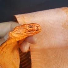 Genuine Asian Spitting Cobra Snake Skin Snakeskin Head Taxidermy Natural oddies wired diy fur
