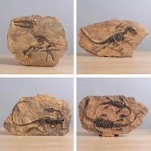 Retro dinosaur fossil resin statue wall hanging,Jurassic dinosaur skull sculpture as faux taxidermy, Home decoration accessories
