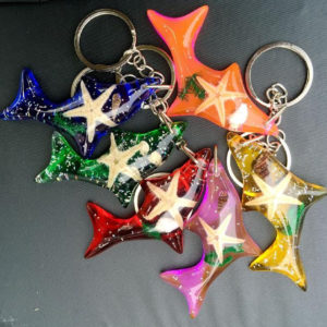 free shipping 50 PCS dolphin style mix colorful fashion keychain starfish jewelry fine keyring TAXIDERMY GIFT Sea Shell. style