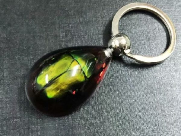free shipping yqtdmy 15 pcs charming green beetle design Taxidermy cool Keychain